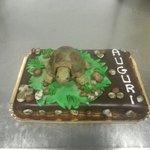 """Torta """"Tartaruga"""" con decorazioni in pasta di zucchero"""