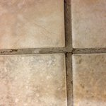 Grout needs replaced.