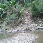 walking to falls located in village