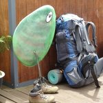 Backpacking Greenshell Mussel