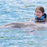 holding the dolphin