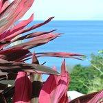 vue de notre terrasse privé :D