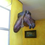 Wooden horse on wall