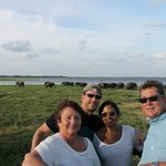 Us fools checking out elephants