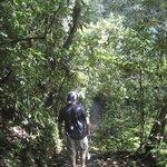 Trail at Lodge