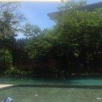 half the pool