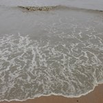 great muddy ocean water you will be enjoy