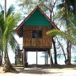First line hut