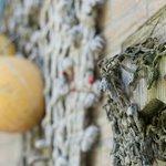 Katwijk aan Zee met een grote visserijhistorie