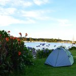 Water views at Waitangi Holiday Park
