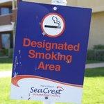 Der Raucherbereich