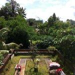 Citrus Tree Villas - Sulendra Foto