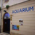 Aquarium Porec - Eingang
