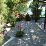 Oasis veranda