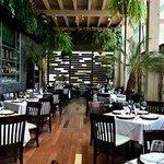 Terraza moderna y acogedora inspirada en la Savannah  Africana