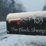 Black Sheep Wine and Beer Store in Maine