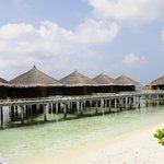 Over-water bungalows with jazzucci
