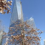 One World Trade Centre from 9/11 memorial gardens