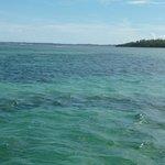El agua de Garapua