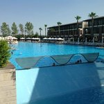 outside pool, last june