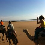 con los camellos por la playa!