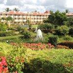 El centro del hotel: Una reserva natural