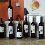 Newest wine from Puglia,Italy great selections of whites and reds from a Team um family and if c
