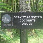 Cool notice