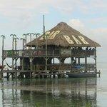 Palapa's bar on ocean
