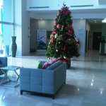 Decoración Navideña, Recepción del hotel
