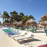 Sun loungers and big tables available on beach front