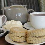 Devonshire Tea (wholemeal scones)