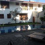 The pool at Clove Villa