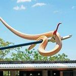Apex Predators Snake Park