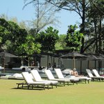 Sun loungers on lawn by one of the pools