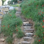 Montée d'escalier vers la chambre du Ventoux et du Chêne