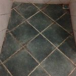 Stained shower floor tiles and grout