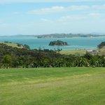 Cable Bay Vineyard, Waiheke Island, New Zealand
