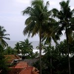 Вид на океан из отеля