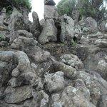 หินสลักเป็นรูปต่างๆ