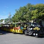 Trolley - Tourist Tour