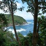 Coastal view from Carib Village
