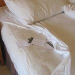 Le macchie sul lenzuolo e sul materassino