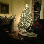 Another pretty shot of the holiday tree in the main parlor.