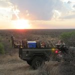 Moriti Private Safaris - Day Tours