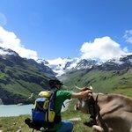 Alpine Trails