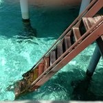 Stairs from the villa to the sea for snorkelling