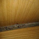 Trasera del armario desclavada