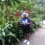 Exploring the botanical garden