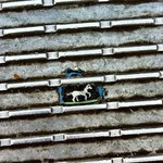 A street artist makes art on used gum at the Millennium Bridge. Never would have seen it on our